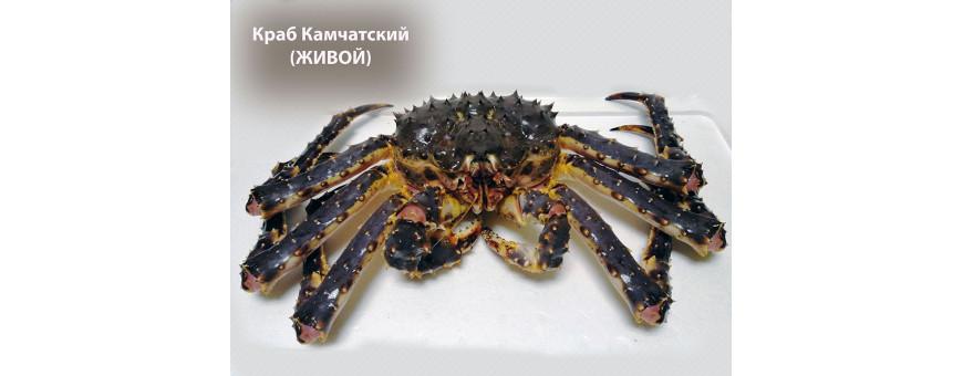 Краб Камчатский. Доставка по Москве. Купить клешни краба, цена за кг