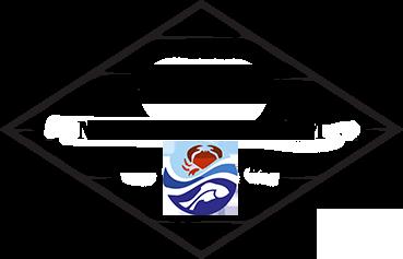 Логотип футер